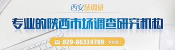 西安慧新调研公司